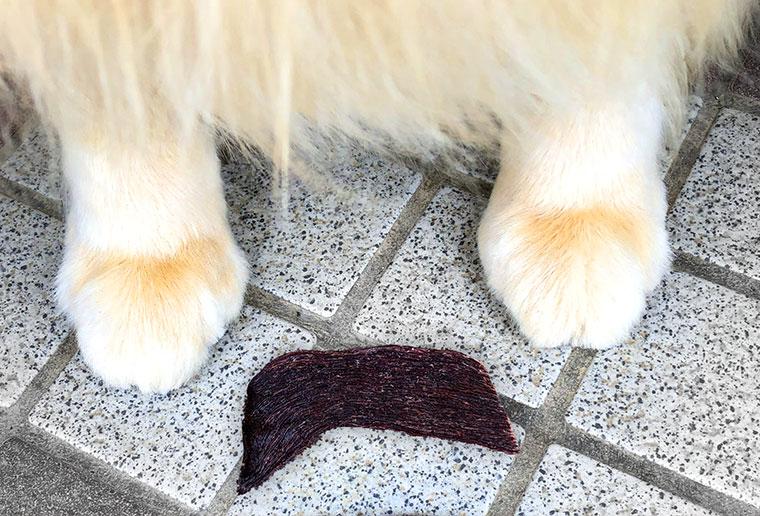 エゾ鹿スライスジャーキー&犬 画像
